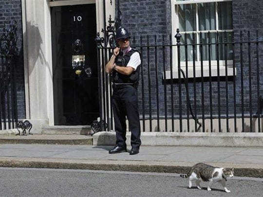 Larry the Downing Street cat walks past a police officer at 10 Downing Street in London, after Britain's Prime Minister David Cameron left to face prime minister's questions for the last time Wednesday. Cameron will be appearing before Parliament as prime minister for the last time before handing over to successor Theresa May.