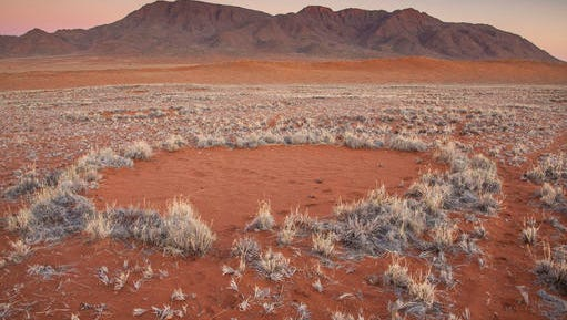 "In this photo provided by Jen Guyton, one of the mysterious ""fairy circles"" in the Namib desert that dot the area with circular barren patches. Scientists have come up with a complex theory involving termites and plants to explain what's happening."