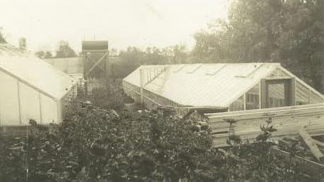 An early greenhouse built by Frank K. Price.
