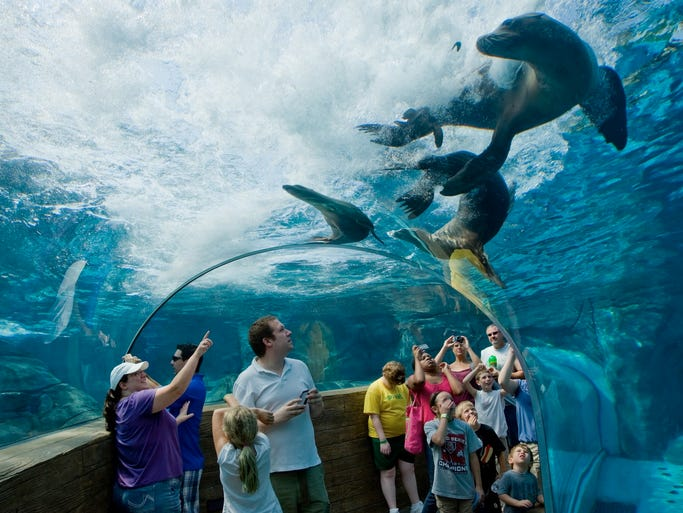 Americas Best Zoos - The 12 best zoos in the world
