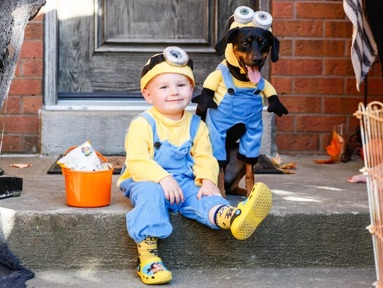 Dog Halloween costumes are offered seasonally at Pet