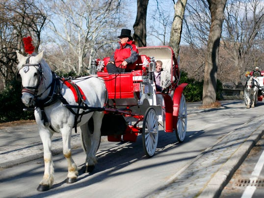 Horse-drawn carriage in New York