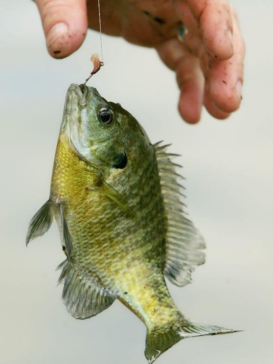 Fishing Season Kicks Off At The Nation's Capitol