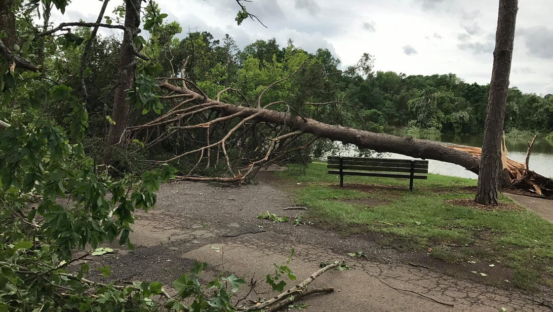 The Cove At Concord Park Closed Through Monday After Storms