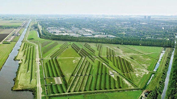 Schiphol Airport landscaping