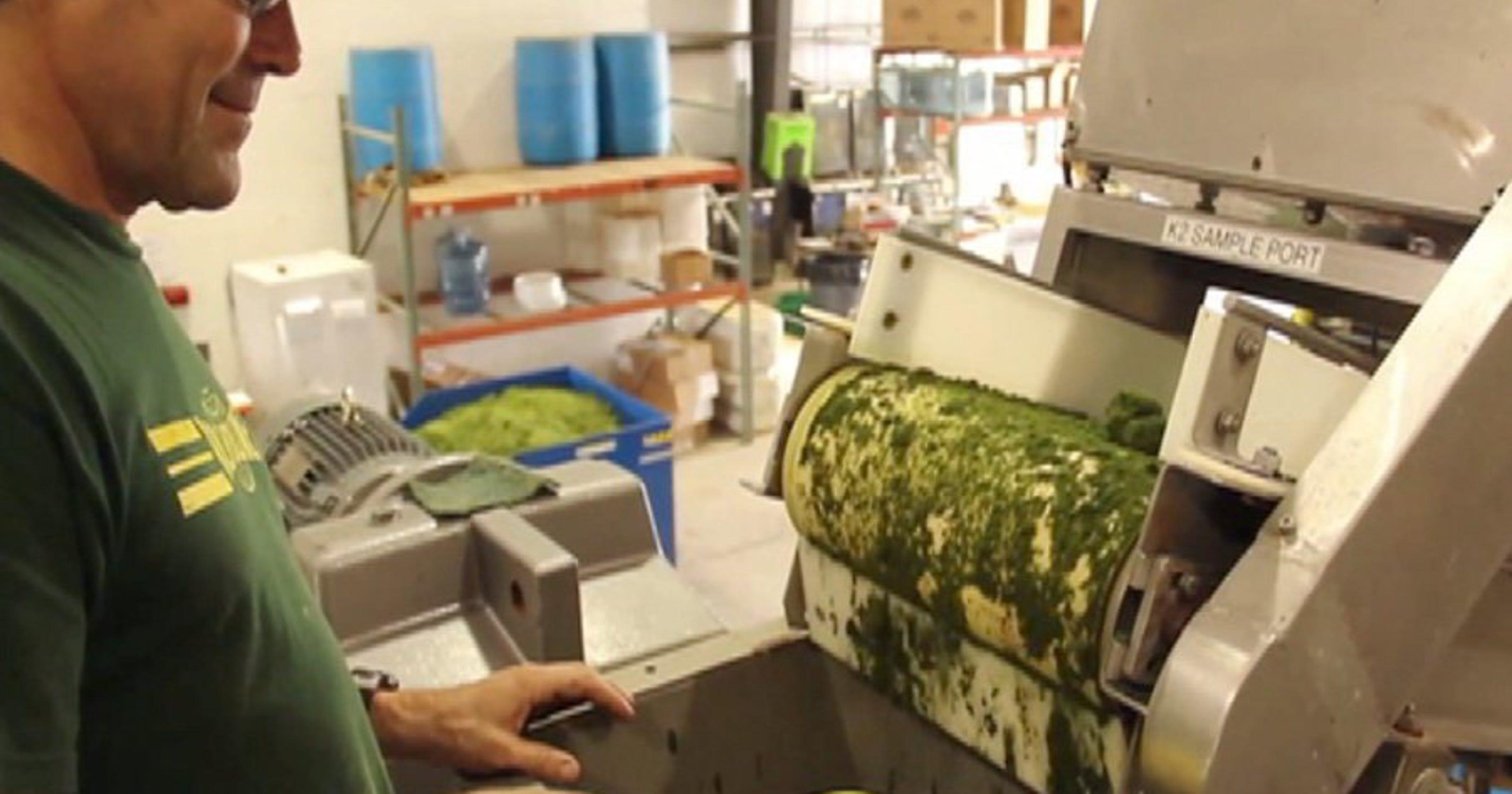 Aquaculture plant could bring 170 jobs to Fellsmere