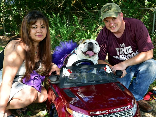 636094727144061783-TCL-Disabled-Pooch7.jpg