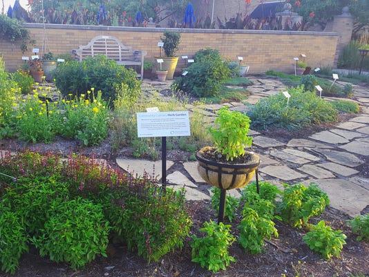 636574037349493299-herb-garden-pic.jpg