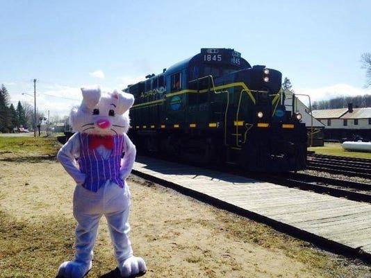 Bunny_train