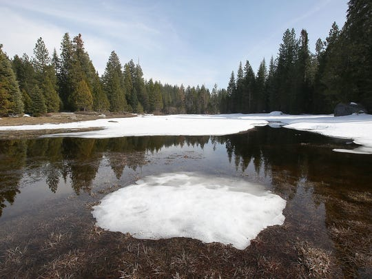 Melting snow forms a pool in a meadow in the Sierra National Forest. Data from snow sensors across the West show that the snowpack has been melting earlier on average as the climate has grown warmer.