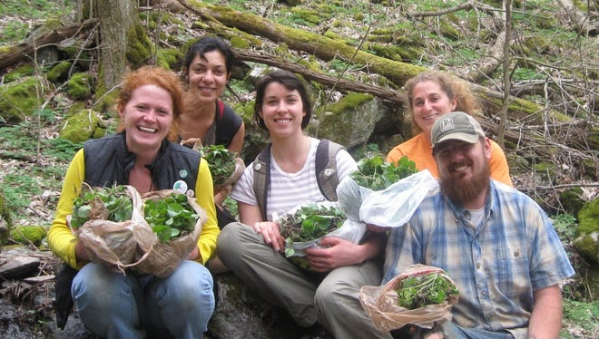 The Southern Appalachian Highlands Conservancy, Roan Mountain State Park officials and the Tennessee Department of Environment and Conservation are asking for volunteers to combat garlic mustard.