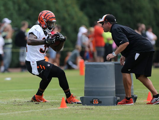 bengalscamp 12