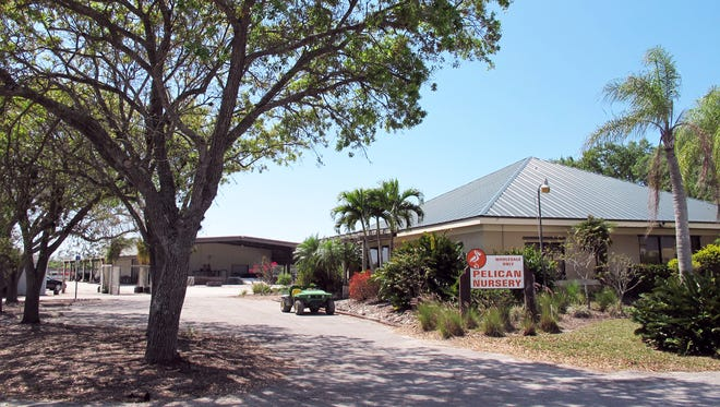 Pelican Nursery closed in 2017 to make way for future development on its 54 acres on the southeast corner of Immokalee Road and Collier Boulevard.