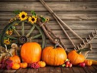 Fill Your Home with Fall
