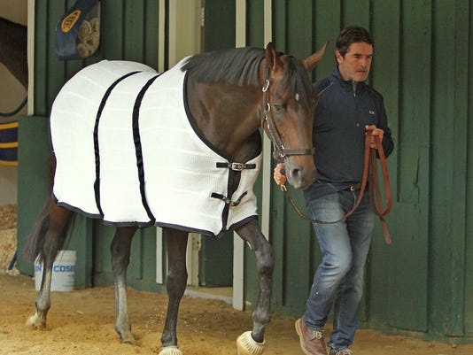 Preakness Stakes Hors_Russ