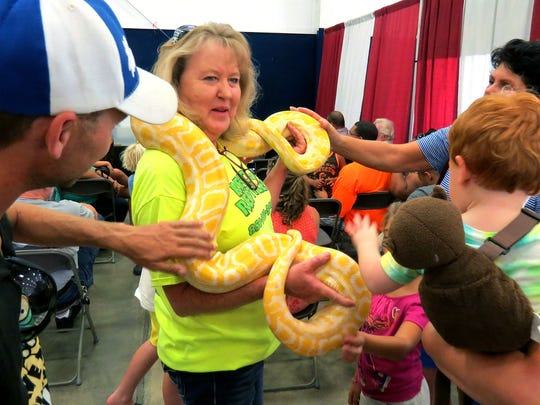 Starla Reno of Reno's Reptiles lets visitors to Repticon Pensacola, and a educational lecture on different reptiles as pets by the Renos, touch a Albino Burmese Python in the Reno's collection.