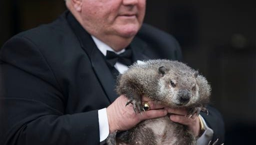 """Inner Circle President Bill Deeley shows Punxsutawney Phil to tourists a day before Groundhog Day in Punxsutawney, Pa., on Monday, Feb. 1, 2016. Members of the Inner Circle planned to reveal their forecast at sunrise Tuesday. A German legend says that if a furry rodent sees his shadow on Feb. 2, winter will last an additional six weeks. If not, spring comes early. In reality, Phil's """"prediction"""" is decided ahead of time by the group. (Mark Pynes/PennLive.com via AP)"""