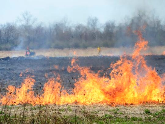 Controlled burns, like this one in Sandusky County