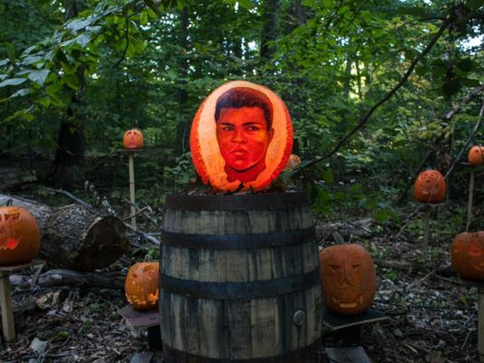 A young Cassius Clay glows at dusk during the final preparations for the Jack-O-Lantern Spectacular put on by Passion for Pumpkins at  Iroquois Park. Oct., 9, 2013