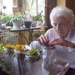Lorraine Galbraith makes sun tea during a therapy session.