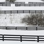 A lone horse stands in a gate at top left at the Menagerie Farm off of Aiken Road in Crestwood, east of Louisville. March 5, 2015