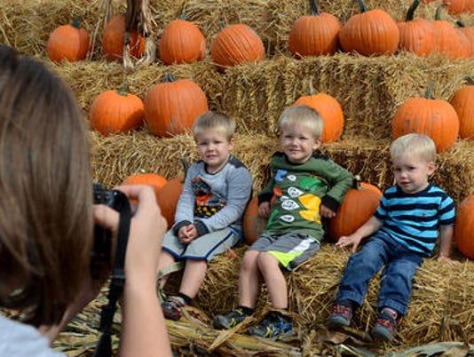 636409987586423389-Pumpkin-fest.jpg