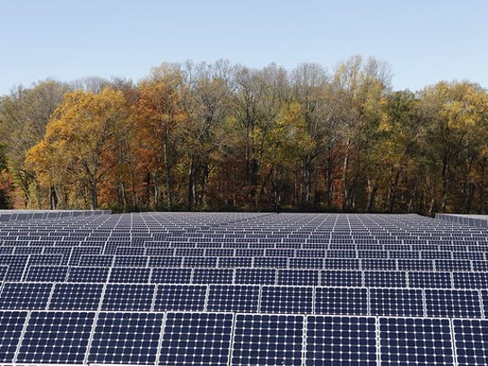 Solar farm with trees in the background.