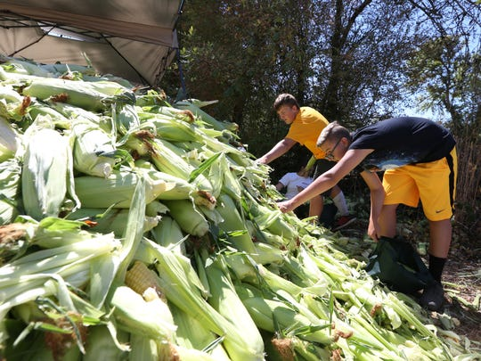 Volunteers Ryan Boyd, left, 14, and Gavin Legner, 14, help sort fresh corn during the 48th annual Aumsville Corn Festival on Saturday, Aug. 27, 2016. Free hot buttered corn on the cob was served to festivalgoers.
