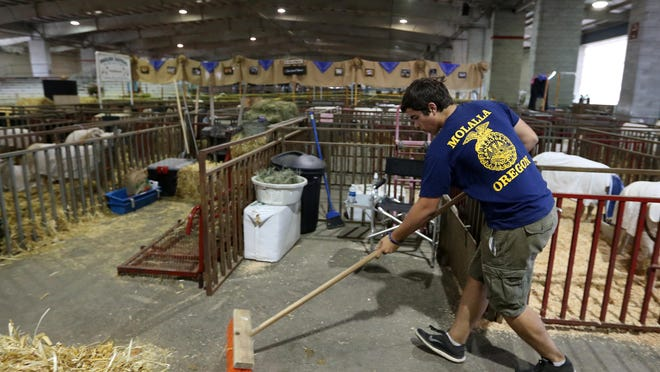 Molalla FFA member Ryan Dunigan sweeps up manure, shavings and hay in the livestock barns at the fairgrounds Friday, the first day of the 150th Oregon State Fair.