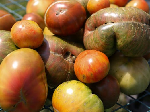A variety of the Heirlooms produced at Ambrosia Farm sit on a cart Monday afternoon. July 21, 2014.