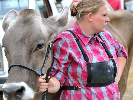 Emily Wingert waits her turn to show her cow during