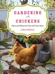 Chickens and gardens have a symbiotic relationship