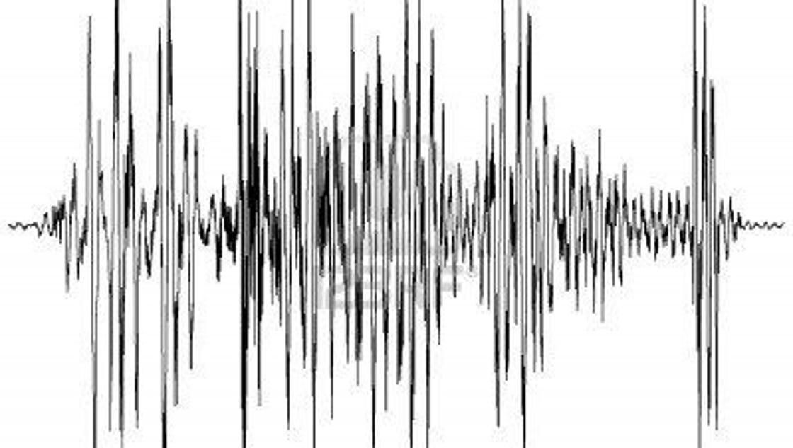 small earthquake recorded near miss  u2014alabama border