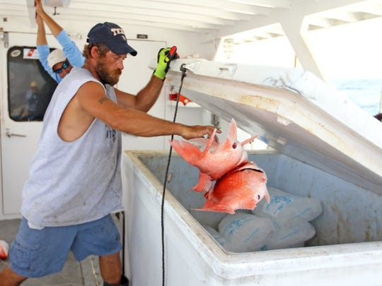 The 2020 red snapper season for recreational anglers in federal waters will begin on June 1.