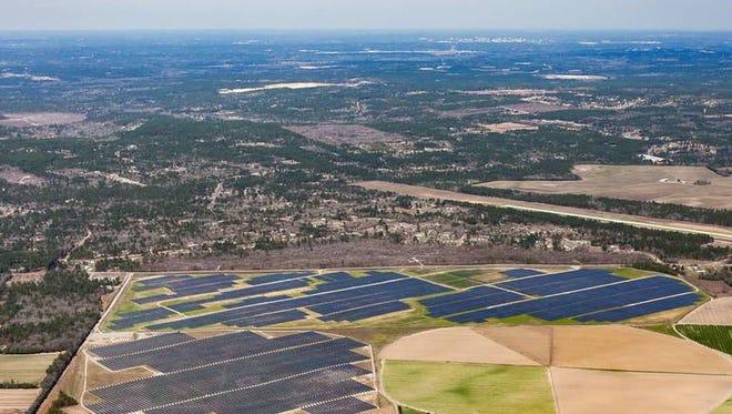 A solar farm sprawls across the landscape in Lexington County.