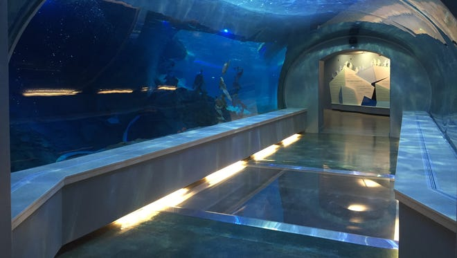 The Detroit Zoo debuts its brand-new, 33,000-square-foot, $30-million Polk Penguin Conservation Center to the media on Wednesday, April 13, 2016. It will open to the public  Monday, April 18, 2016.