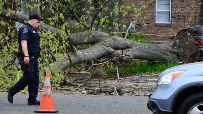 A tree fell across Palisade Ave at Route 5 in Fort Lee on Friday May 4, 2018. Fort Lee Police and PSE&G were on scene. Traffic delays are expected in the area.
