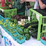 Garden program grows youth entrepreneurship