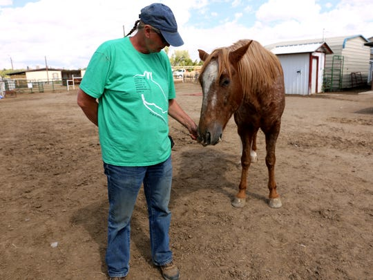 Debbie Coburn interacts with a horse Wednesday at Four Corners Equine Rescue.