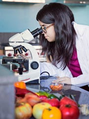 A student peers into a microscope in a food science chemistry lab at Mount Mary University in Milwaukee.