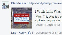 Blanda Nace shared this idea with the Fixing York PA Facebook group.