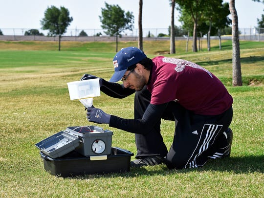 Carlos Yeelot, second-year medical student at the Burrell College of Osteopathic Medicine at New Mexico State University, sets up a device to trap mosquitoes while working in the field in Las Cruces.
