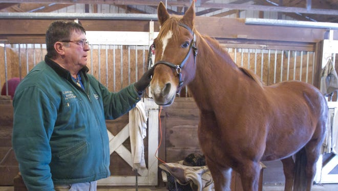 "Michigan Horse Council president and Hamburg Township resident Don Packard will ride his Tennessee Walking horse ""Sunny"" in the Inaugural Parade in Washington, D.C."
