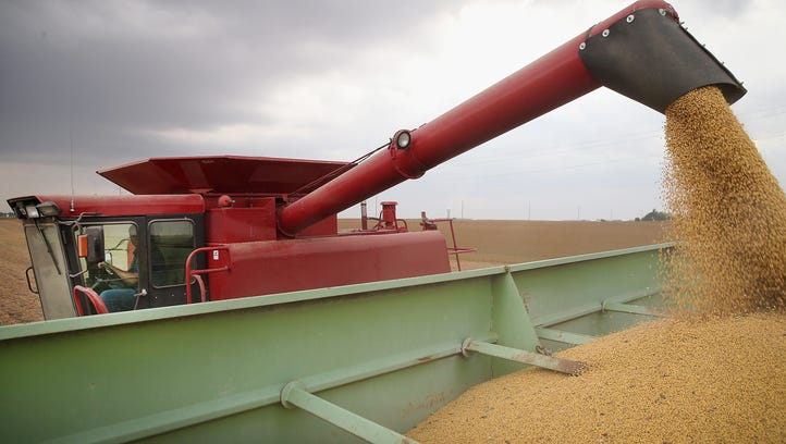 Steel tariffs could have unknown consequences for Mississippi soybean farmers