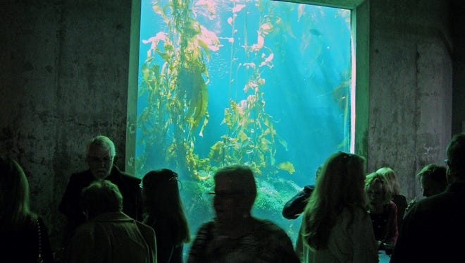 All exhibits and programs at the Aquarium are free from Dec. 2 to 10