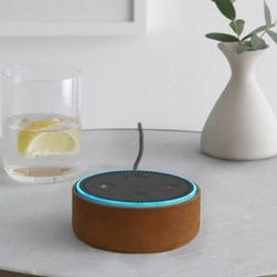 Exclusive: Alexa, when's my next class? This university is giving out Amazon Echo Dots