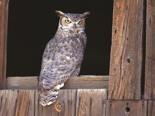 Cincinnati Nature Center will host the adult-only,