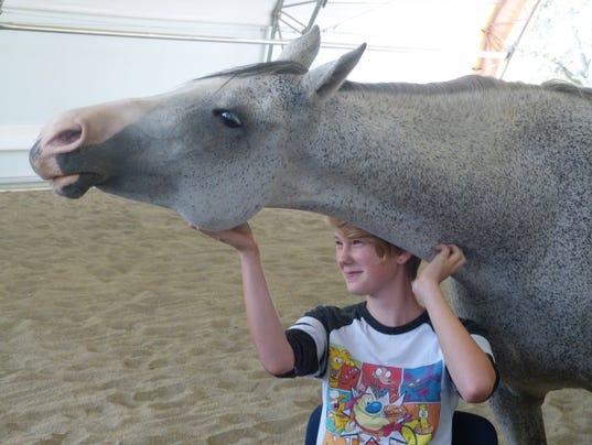 636390211748843339-horse.jpg