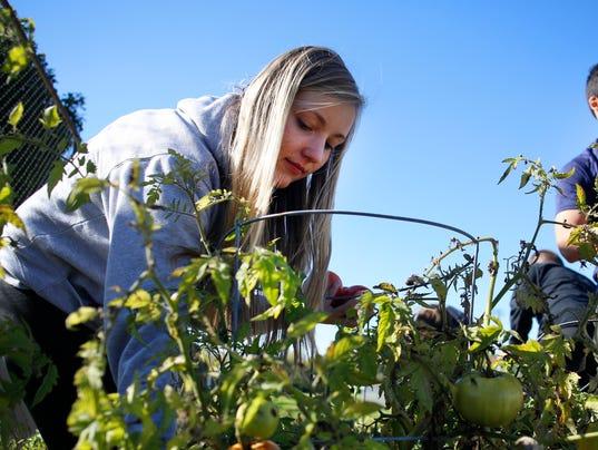 APC_Gardening LEAD.jpg