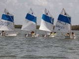 Sign up for sailing camps is at Mackle Park